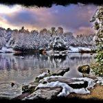zurich lake snow switzerland iphoneography