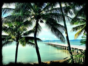 whitsunday islands south molle australia