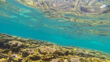 backpacker snorkel perhentian islands malaysia-1