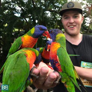 magnetic island australia east coast backpacker top destinations