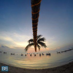 backpacker koh tao thailand diving scuba freedive