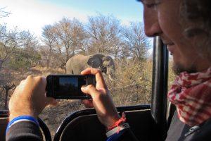 kruger national park backpacker trave safari south africa