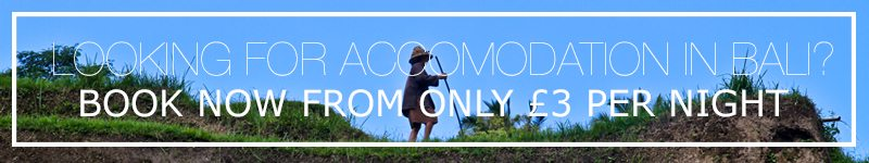 accommodation hostels hotels bali indonesia
