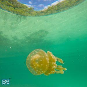 philippines in photos travel backpacker siargao palawan cebu beach