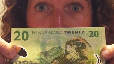 budget month new zealand backpacker travel