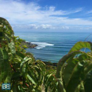 manu bay raglan surf new zealand-2