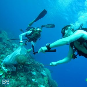 marine conservation projects fiji awesome adventures scuba dive backpacker