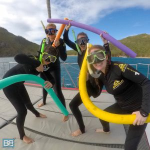 tongarra whitsundays sailing adventure review airlie beach east coast australia