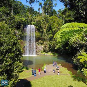 explore tropical north queensland australia cairns mission beach