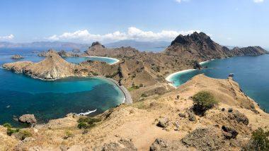 komodo national park guide luan bajo backpacker dragons padar viewpoint indonesia