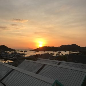 planning a trip to komodo national park how to guide indonesia labuan bajo dragons-6