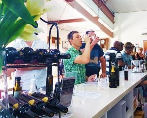 hunter valley wine tours australia