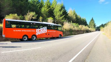 review stray new Zealand bus passes hop on hop off backpacking backpacker nz