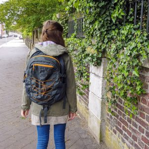 best travel backpack for women north face Borealis
