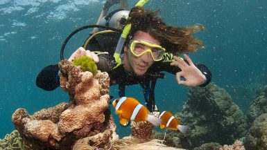 best things to do in cairns barrier reef dive atherton tablelands cape tribulation bungy jump